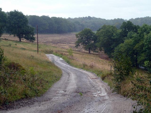 Track from Stanton Moor