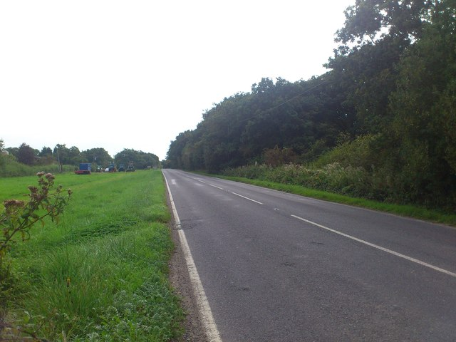 Horsham Road the B2135 south to Steyning