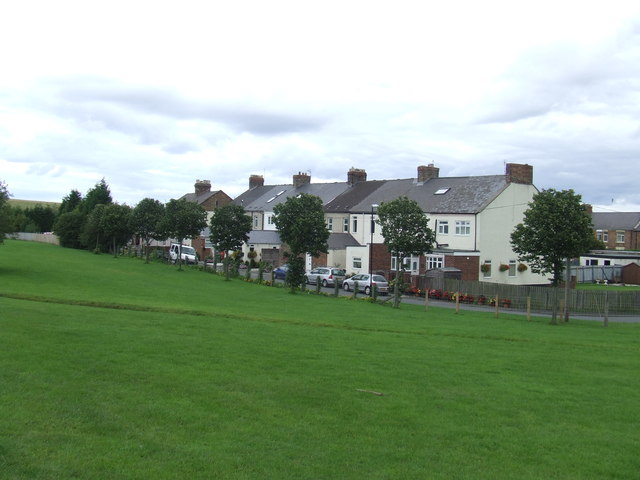 Houses at Herrington Country Park