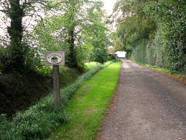 Driveway to Hannover Farm, Ashill