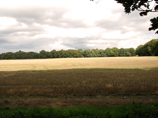 Harvested field by Brink Hill, Gayton