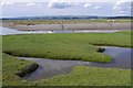 SD3575 : River Eea estuary at Sand Gate by Ian Taylor
