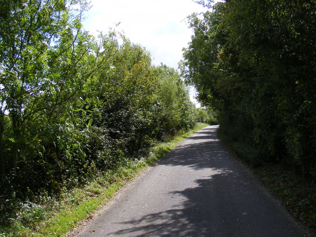 Road near Bally Hoo Cottage