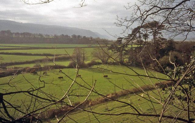 Farmland north of Allerford
