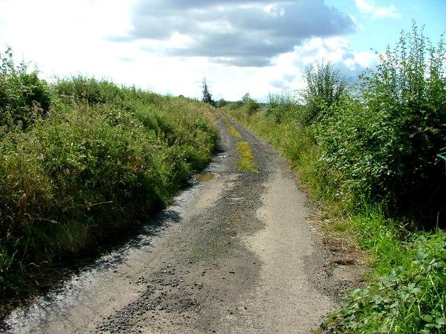 Track to Newbigging Farm