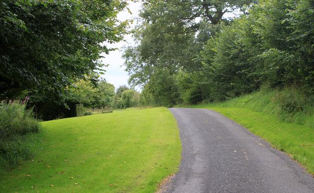 2011 : Track to Lodge Farm (2)