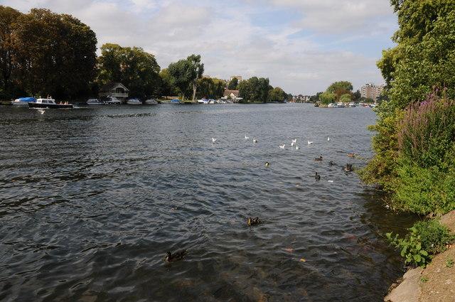 River Thames near Kingston Upon Thames