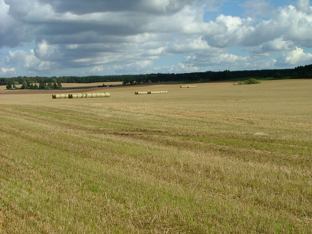 Straw bales at Clathymore