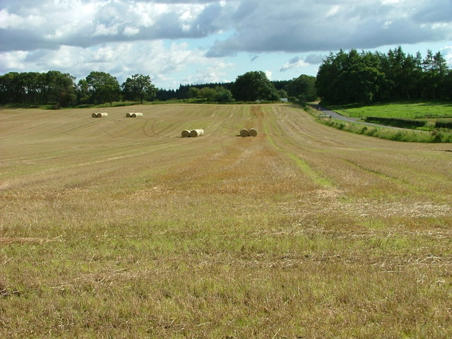 Straw bales at Findo Gask
