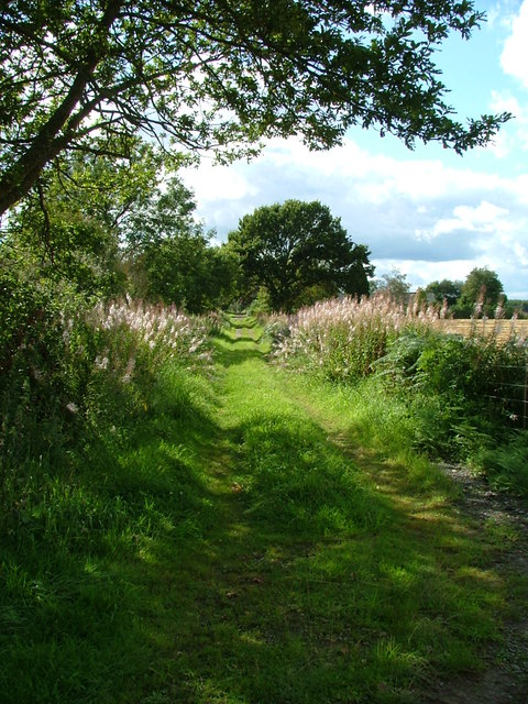 The old road from Clathymore