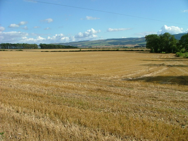 Stubble field at Trinity Gask