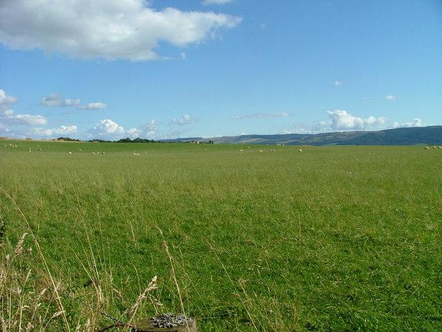 Grazing land at Craigens