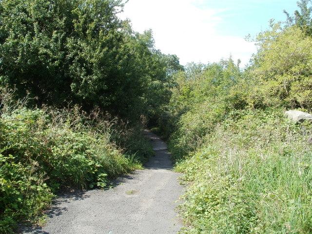 Footpath between Horsecastle Farm Road and Brunel Way, Yatton