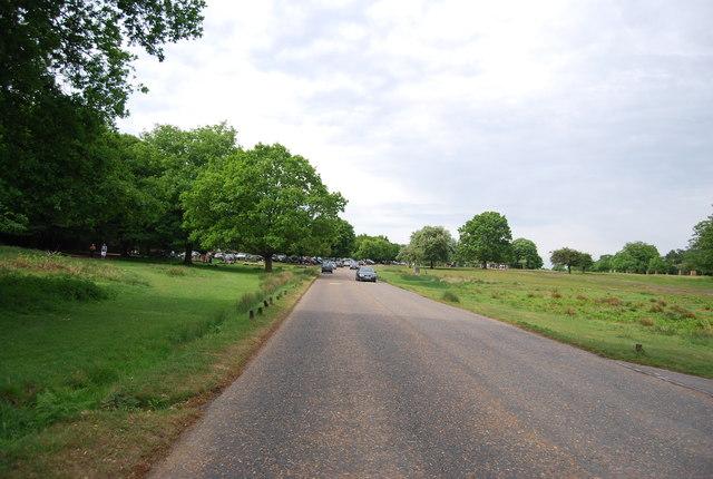 Road in Richmond Park