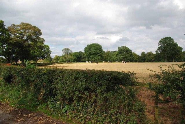 Keele Pasture