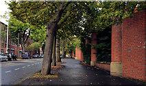 J3375 : Duncairn Gardens, Belfast by Albert Bridge