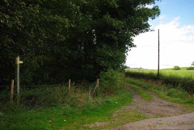 Footpath to Honeywall Farm