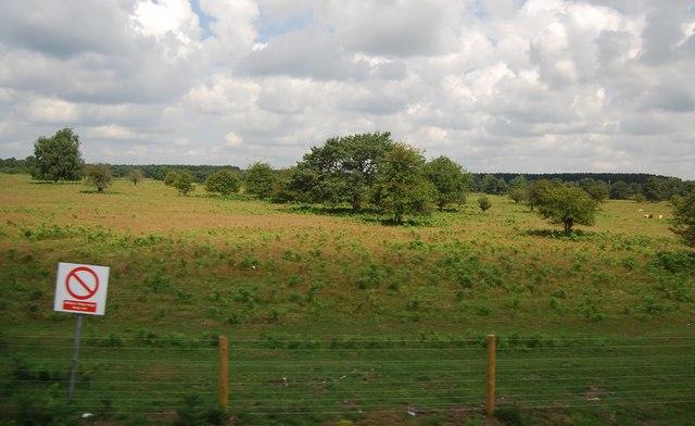 Danger Area, Bridgham Heath
