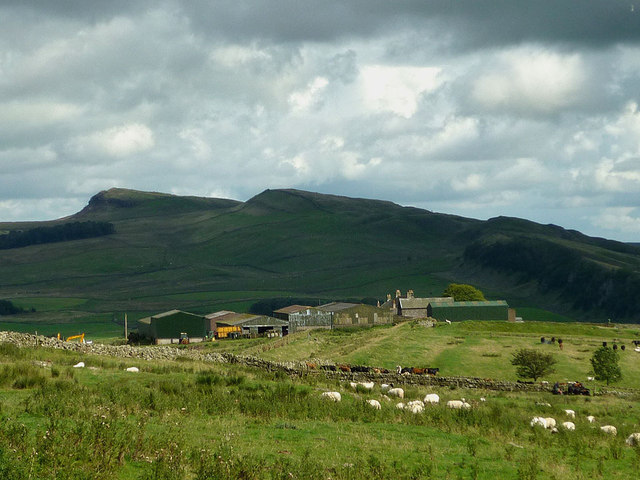Great Chesters Farm, Hadrian's Wall