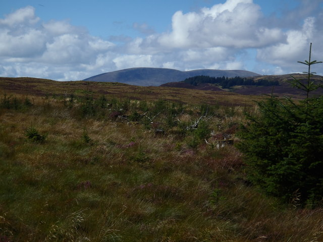 Cairnsmore of Fleet and Craig of Grobdale from near McGhie's Seat