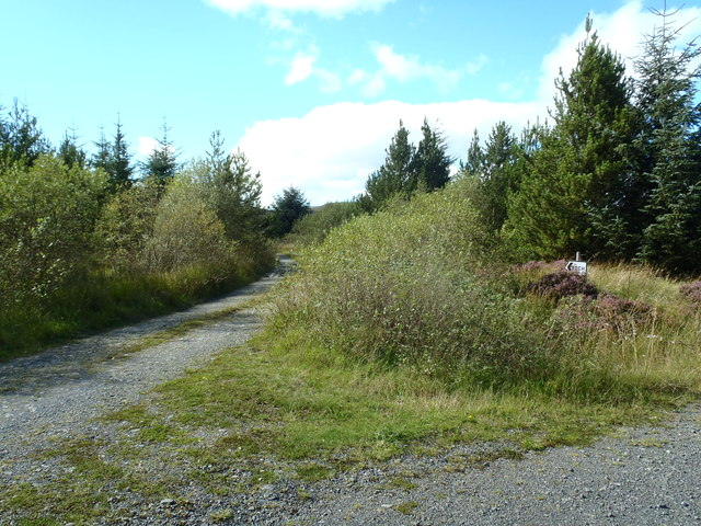 Track junction near Loch Whinyeon
