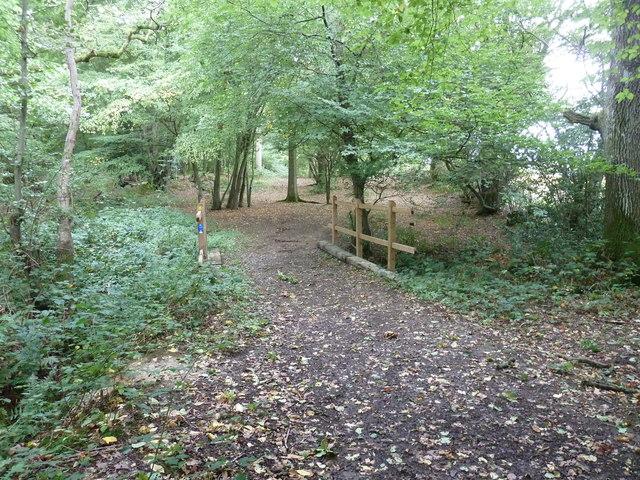 Bridleway bridge in Great Home Wood