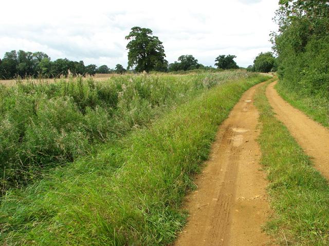 This way to Middleton on Tower Lane