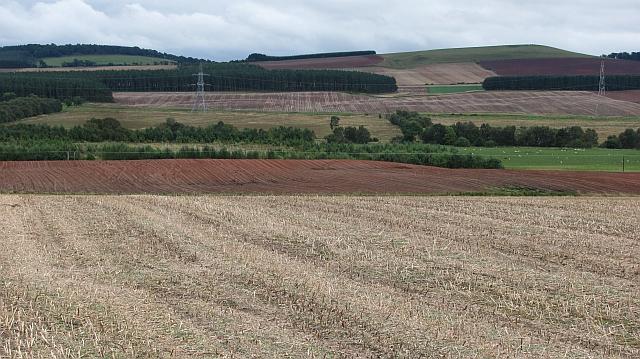 Oilseed rape stubble, Nether Huntlywood