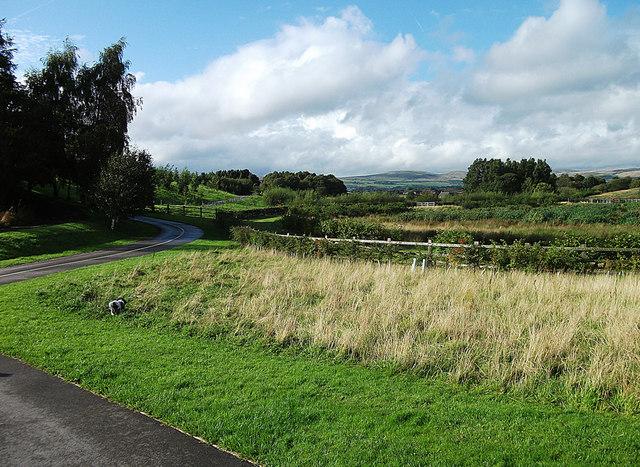 Stanney Brook Valley