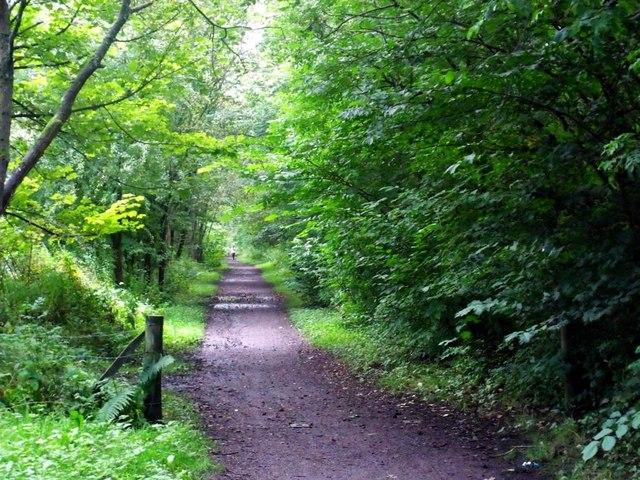 Lennoxtown, path to Milton of Campsie