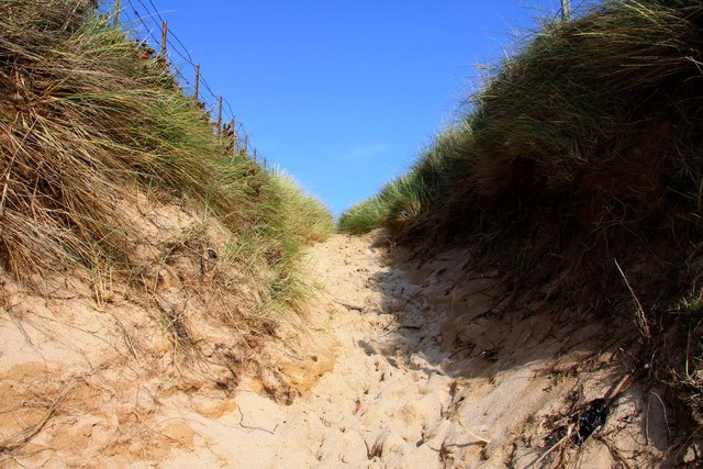 Track up the dunes