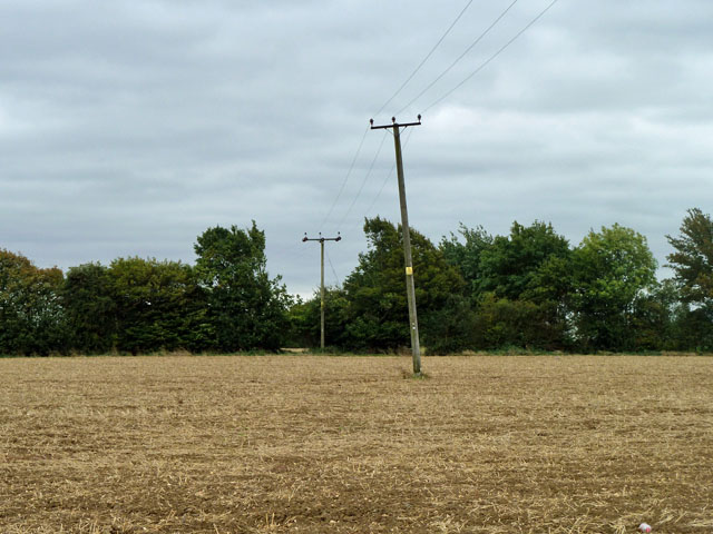 Power lines towards Lawn Hall