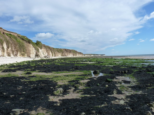 Low tide, Sewerby Rocks