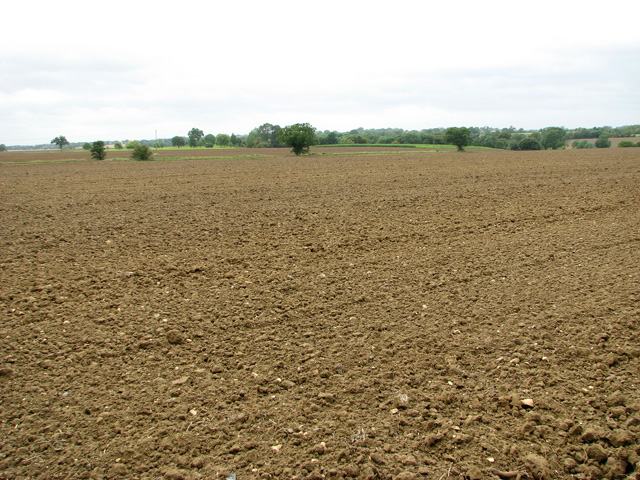 Farmland north of Doggett, Stradbroke