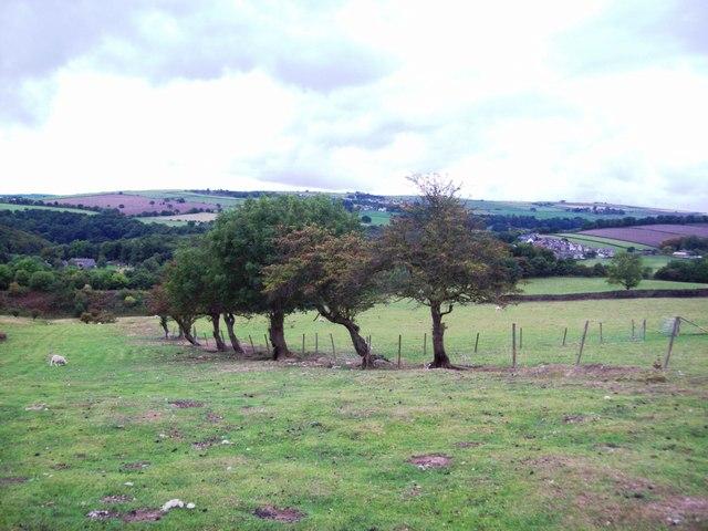 Footpath Over Mill Moor