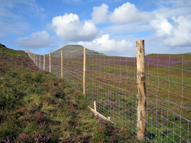 Orbost Estate deer fence