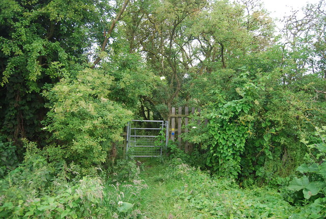 Gate on the path to Birling Ashes