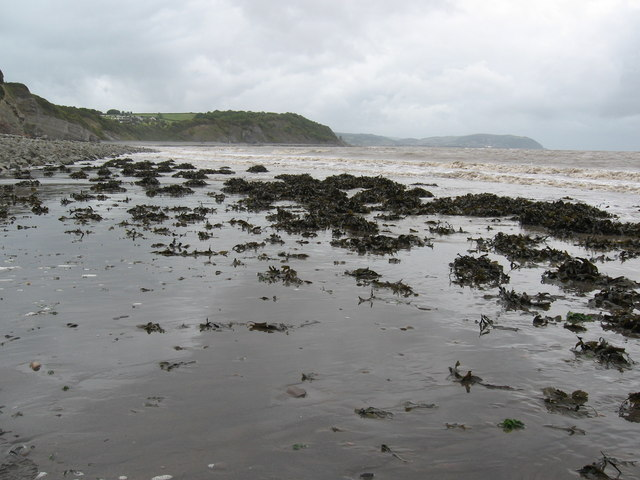 Warren Bay