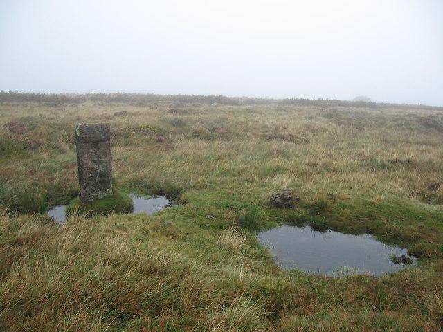 Boundary Stone, Holne Moor