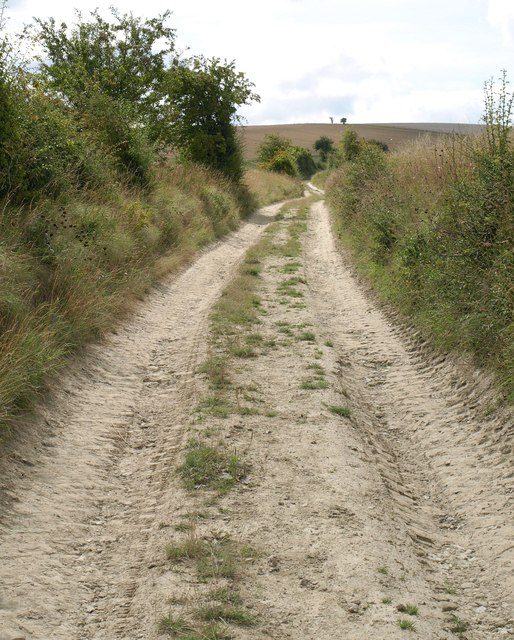 Bridleway near Chirton Bottom