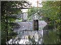 TQ2865 : River Gardens Screens by Stephen Craven