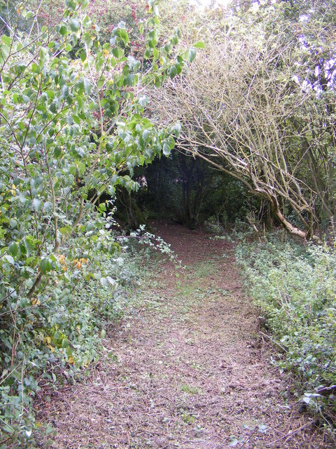 Footpath to Yew Tree Farm