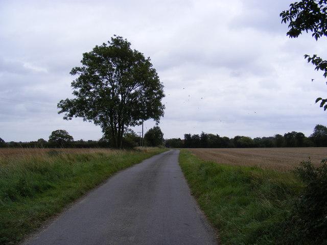 Lane between Bird's Lane & Chapel Road