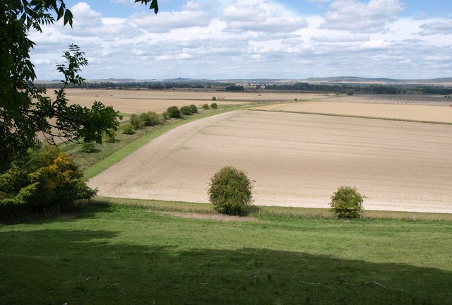 View from beside Marden Copse