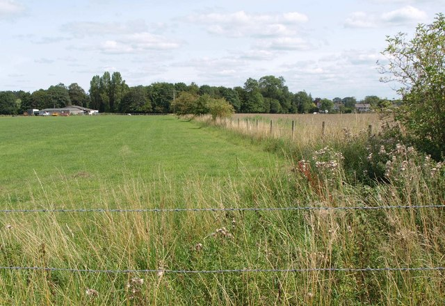 Field boundary near Marden