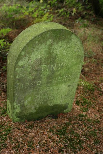 Pet's grave at Otterhead
