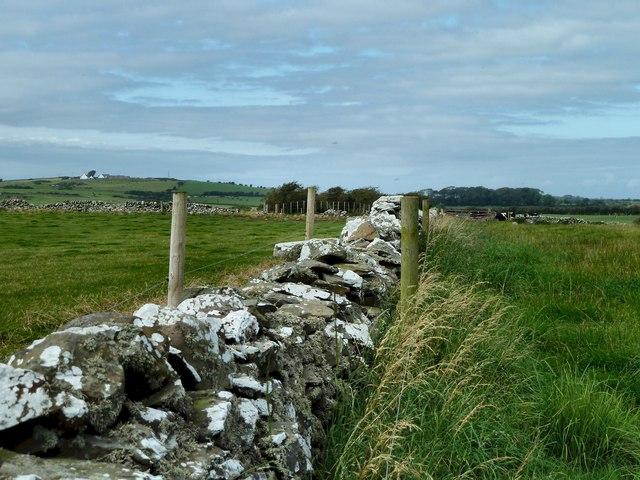 Pasture south of Kevans Farm