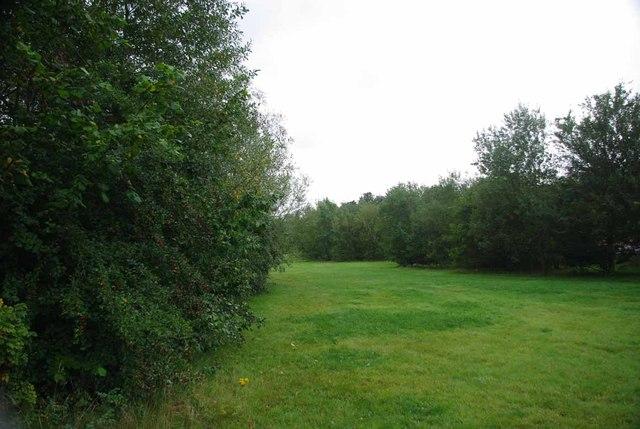 Race Course Community Woodland