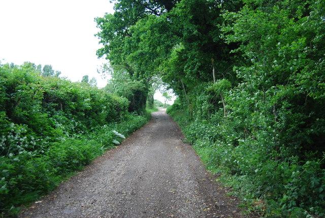Downs Link north of Wyckham Farm