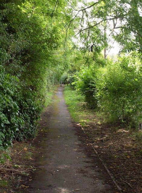 Former lane at Etchilhampton
